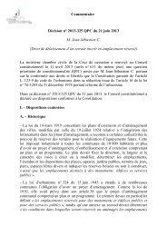 Commentaire de la décision n° 2013-325 QPC du 21 juin 2013 - M ...