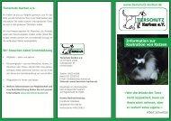 Information zur Kastration von Katzen - Tierschutz-Karben eV