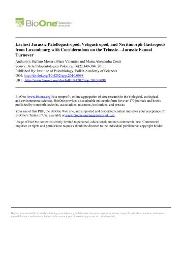 Earliest Jurassic Patellogastropod, Vetigastropod, and ... - CDAM