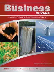 GUYANA - Undefined Software Solutions