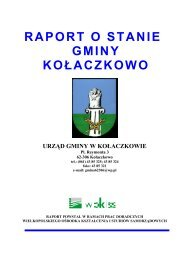 RAPORT O STANIE - Gmina Kołaczkowo
