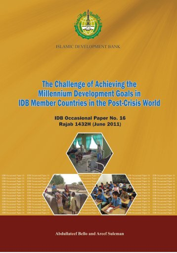 The Challenge of Achieving the Millennium Development Goals in ...