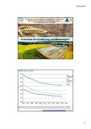 Potentiale für Ernährung und Bioenergie? - Nachhaltige Nutzung ...