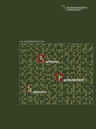 Ideale - Geschäftsbericht 2007 - Liechtensteinische Landesbank