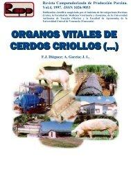 Órganos vitales de cerdos criollos y CC21 alimentados con altos ...