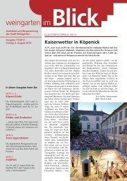 Ausgabe 17/2013 - Weingarten im Blick