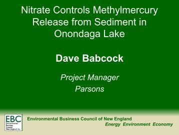 Nitrate Controls Methylmercury Release from Sediment in ...