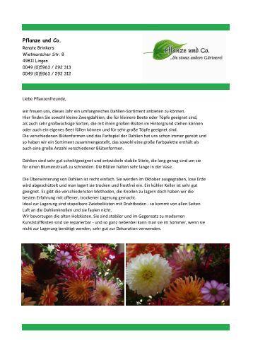 Sonderliste Dahlien 2013. - Pflanze und Co.