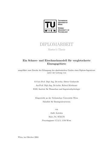 PDF - download (ca. 14MB) - Institut für Wasserbau und ...