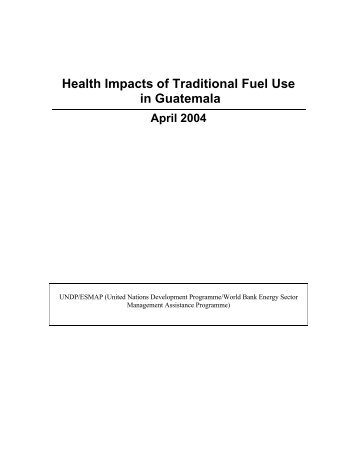 Guatemala: Health Impacts of Traditional Fuel Use In ... - Euromedina