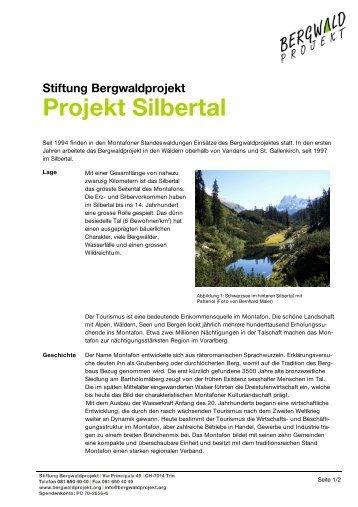 Stiftung Bergwaldprojekt Projekt Silbertal