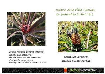 hoja divulgadora - Desarrollo rural Lanzarote Blog
