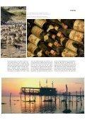 TRAVEL - Consorzio di Tutela dei Vini d'Abruzzo - Seite 4