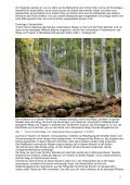 Stellungnahme zu den Sicherungsarbeiten im Altensteiner ... - VdHK - Page 3