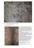 Stellungnahme zu den Sicherungsarbeiten im Altensteiner ... - VdHK - Page 5