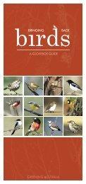 Bringing Birds Back - Greening Australia