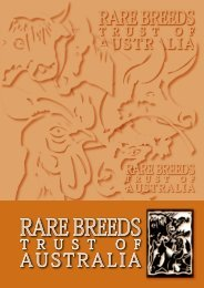 Download a Copy of the Report - Rare Breeds of Australia