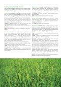 apie vejas - Sėklos - Page 6