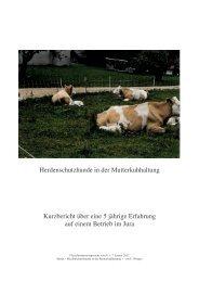 Bericht - Herdenschutz