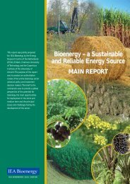 Bioenergy – a Sustainable and Reliable Energy Source - Task 39