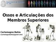Ossos e Articulações dos Membros Superiores