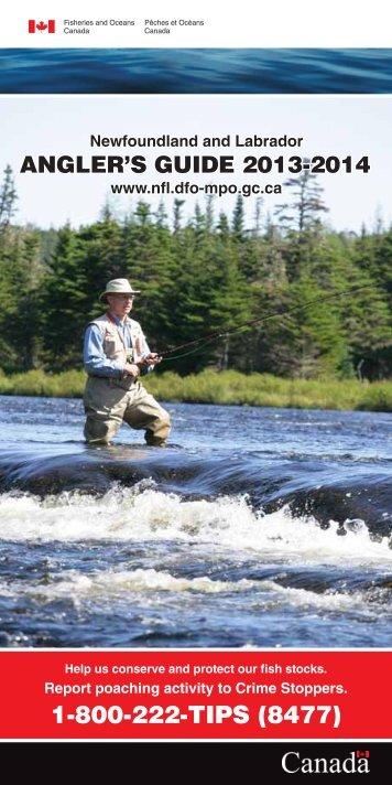 Fs111-1-2013-eng.pdf - Newfoundland and Labrador Region
