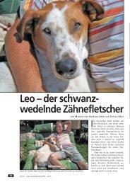 Leo – der schwanz- wedelnde Zähnefletscher - WUFF - online