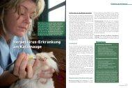 Herpesvirus-Erkrankung am Katzenauge - BolligerTschuor