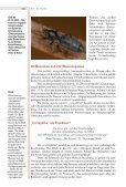 S. 158-162, 0,8 MB - Natur-in-NRW.de - Page 5
