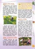 Gyógyító növények - Zöldülj! Fordulj! - Page 3