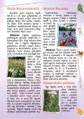 Gyógyító növények - Zöldülj! Fordulj! - Page 7