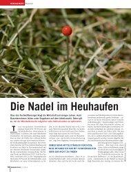 Die nadel im Heuhaufen - Dr. Wieselhuber & Partner GmbH ...