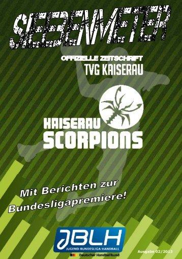 Sonderheft Bundesliga - TVG Handball