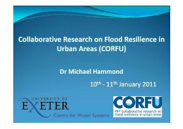 Collaborative Research on Flood Resilience in Urban Areas ...