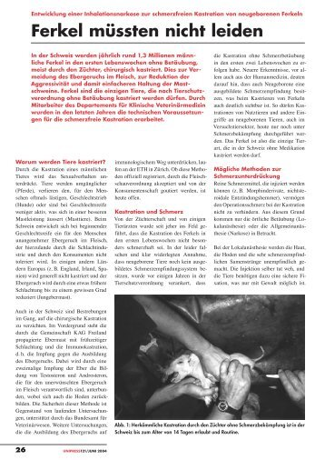 Ferkel müssten nicht leiden» von Urs Schatzmann (pdf ... - Uniaktuell