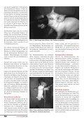 Ferkel müssten nicht leiden» von Urs Schatzmann (pdf ... - Uniaktuell - Page 3