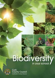 Biodiversity in Your School - Cork County Council