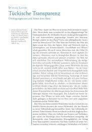Tückische Transparenz. Überlegungen vor und hinter dem Netz (PDF)