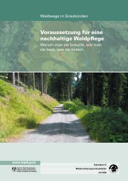 Waldwege in Graubünden - Waldwissen.net