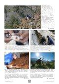 Die Farben der Gesteine – oder die Schweiz als ... - Erlebnis Geologie - Seite 4