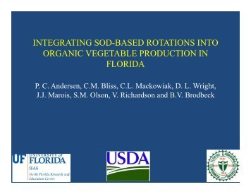 integrating sod-based rotations into organic vegetable production in ...