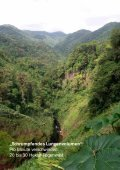 pdf - 1.84 MB - Rainforest Alliance - Page 6