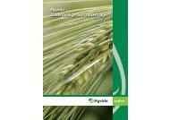 Broschüre Hyvido – zuverlässige Spitzenerträge - Syngenta