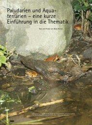 eine kurze Einführung in die Thematik. Draco, NT ... - (SKN) Reptilien