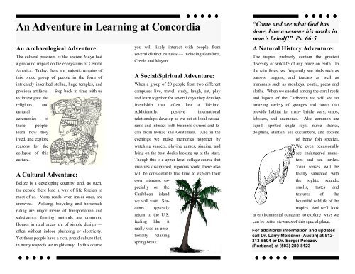 An Adventure in Learning at Concordia - Concordia University