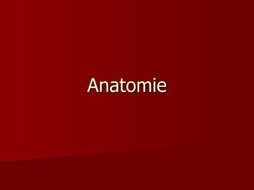 Grundbegriffe der Biologie Teil 4 - PharmXplorer