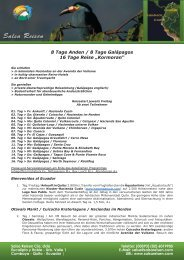 Programm als PDF speichern - Salsa Reisen, Quito