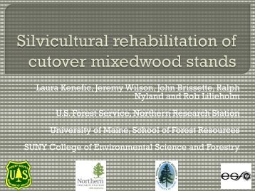 Silvicultural rehabilitation of cutover mixedwood stands