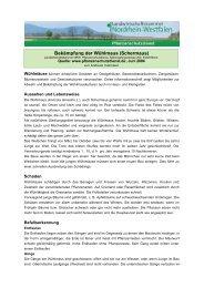 Bekämpfung der Wühlmaus (Schermaus) - WBV Viechtach