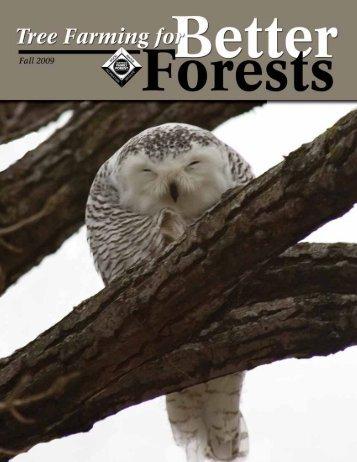 Download PDF - Minnesota Tree Farm System